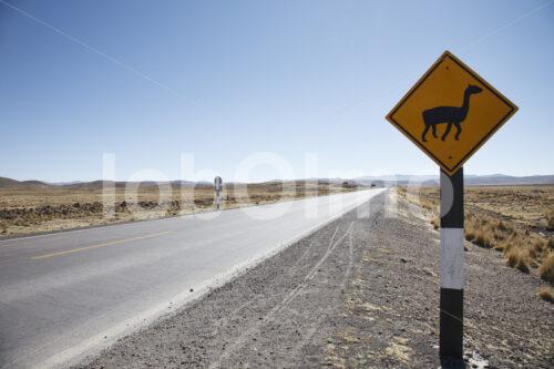 Alpaka-Hinweisschild (Peru, CIAP) - lobOlmo Fair-Trade-Fotoarchiv