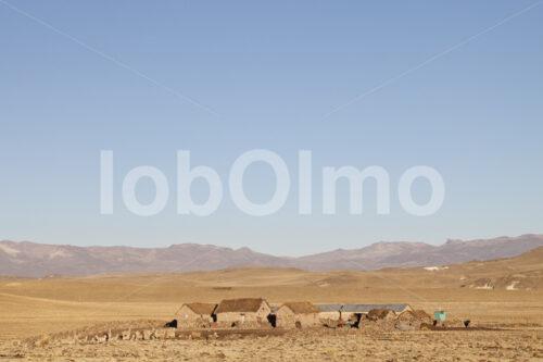 Gehöft eines Alpaka-Hirten (Peru, CIAP) - lobOlmo Fair-Trade-Fotoarchiv