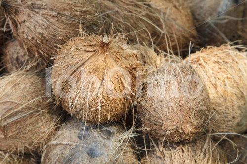 Geschälte Kokosnüsse (Sri Lanka, MOPA/BioFoods) - lobOlmo Fair-Trade-Fotoarchiv