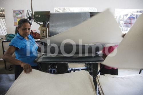 Glätten von Elefantenkot-Papier (Sri Lanka, MAXIMUS) - lobOlmo Fair-Trade-Fotoarchiv