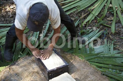 Herstellen von Latexziegeln (Mexiko, Chicza) - lobOlmo Fair-Trade-Fotoarchiv