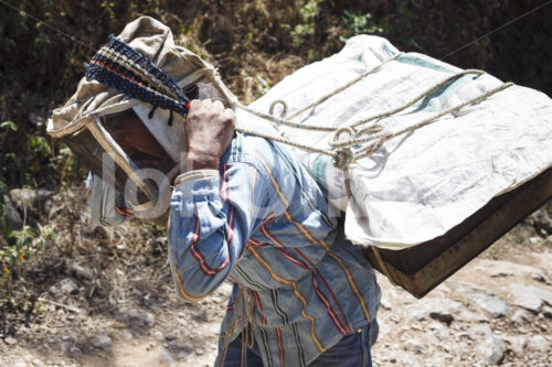 Imker (Guatemala, GUAYA'B) - lobOlmo Fair-Trade-Fotoarchiv