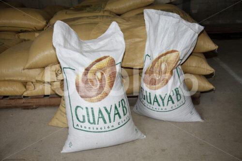 Kaffeelager (Guatemala, GUAYA'B) - lobOlmo Fair-Trade-Fotoarchiv
