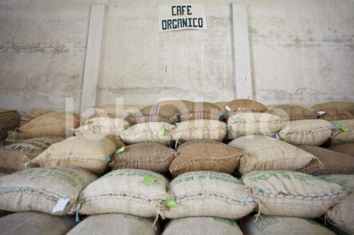 Kaffeelager (Mexiko, UCOAAC) - lobOlmo Fair-Trade-Fotoarchiv