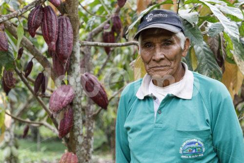 Kakaobauer (Bolivien, EL CEIBO) - lobOlmo Fair-Trade-Fotoarchiv