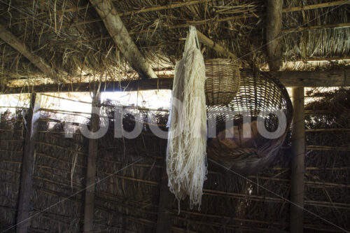 Schafwolle (Chile, Chol-Chol) - lobOlmo Fair-Trade-Fotoarchiv