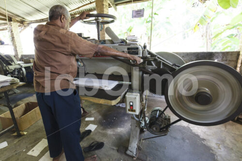Schneiden von Elefantenkot-Papier (Sri Lanka, MAXIMUS) - lobOlmo Fair-Trade-Fotoarchiv