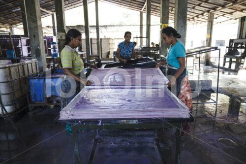 Schöpfen von Elefantenkot-Papier (Sri Lanka, MAXIMUS) - lobOlmo Fair-Trade-Fotoarchiv