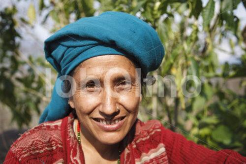 Teepflückerin (Nepal, KTE) - lobOlmo Fair-Trade-Fotoarchiv