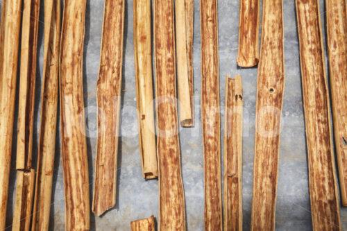 Trocknen der Zimtinnenrinde (Sri Lanka, SOFA/BioFoods) - lobOlmo Fair-Trade-Fotoarchiv
