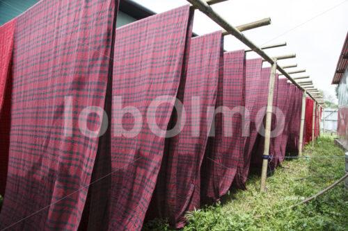 Trocknen des gefärbten Stoffs (Nepal, Mahaguthi) - lobOlmo Fair-Trade-Fotoarchiv