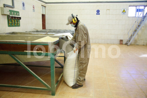 Verpacken der Quinoa (Bolivien, ANAPQUI) - lobOlmo Fair-Trade-Fotoarchiv