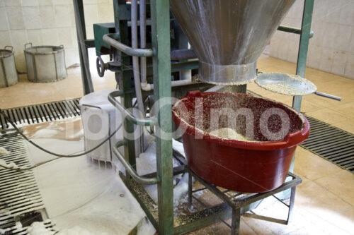 Waschen der Quinoa (Bolivien, ANAPQUI) - lobOlmo Fair-Trade-Fotoarchiv