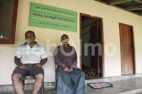 Zimtbauern (Sri Lanka, SOFA/BioFoods) - lobOlmo Fair-Trade-Fotoarchiv